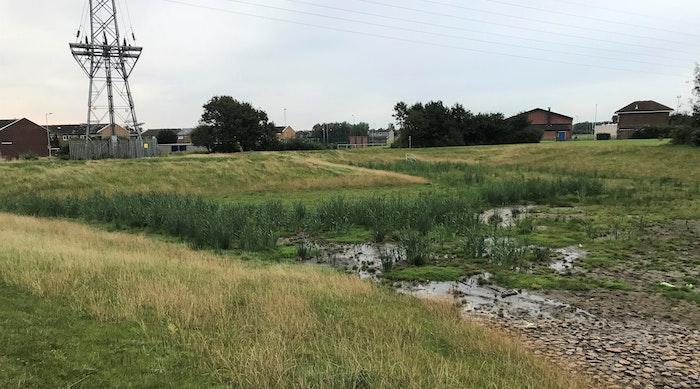 Balfour Beatty Monkton 01 Area 1 pond b