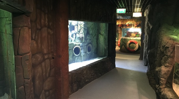 Exploris Aquarium Oct 2016 004